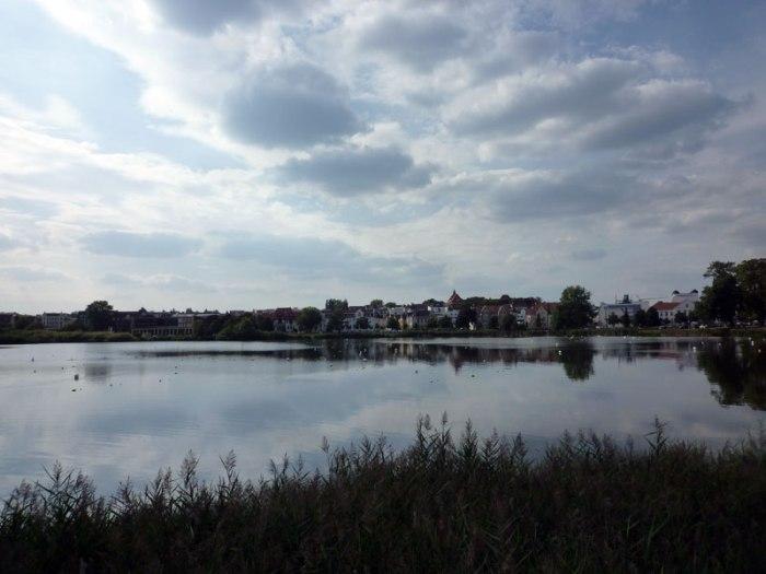 Schwerin-MicheleMoricci-TheArtWalk#11